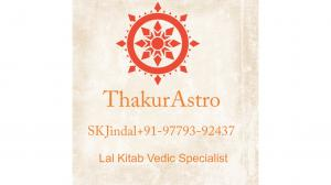 Marriage Relationships solutions astrologer+91-9779392437