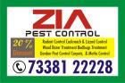 Pest Control 7338122228   Cockroach Service   1479   20% Discount