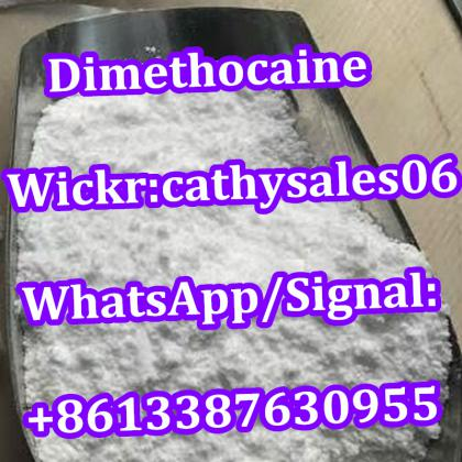 99% Purity New Product Local Anesthetic Powder Larocaine CAS 94-15-5